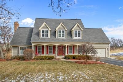 Crystal Lake Single Family Home For Sale: 685 Saddle Ridge