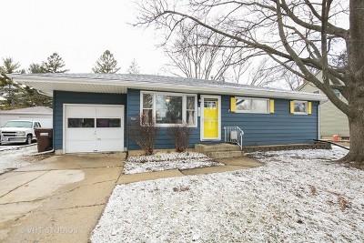 Woodstock Single Family Home For Sale: 1021 Jewett Street