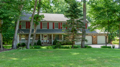 Crete Single Family Home New: 23824 South Plum Valley Drive