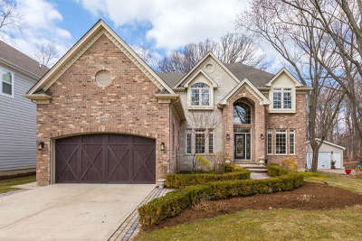 Naperville IL Single Family Home For Sale: $1,149,000