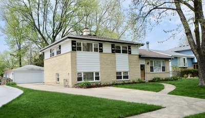 Mount Prospect Single Family Home For Sale: 1410 North Sauk Lane