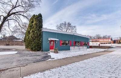 Du Page County Commercial For Sale: 1717 Ogden Avenue