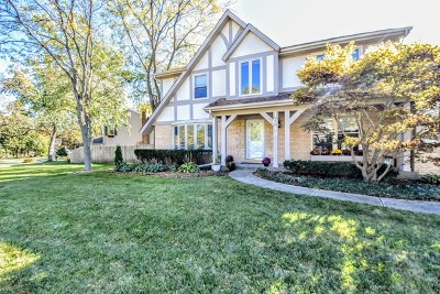 Libertyville Single Family Home New: 1046 Wellington Avenue
