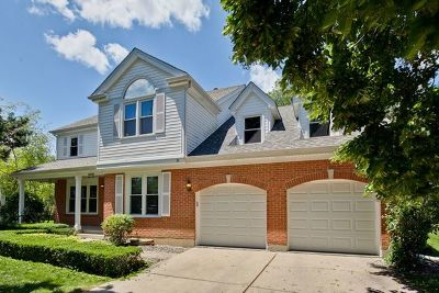 Buffalo Grove Single Family Home For Sale: 32 Chestnut Court West
