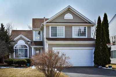 Grayslake Single Family Home New: 872 Tylerton Circle