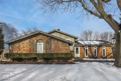 Naperville Single Family Home For Sale: 49 Redstart Road