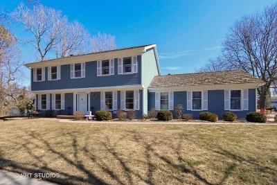 Libertyville Single Family Home New: 800 Paddock Lane