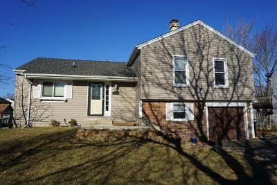 Bartlett Single Family Home New: 984 Grant Street
