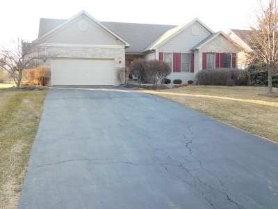 Hoffman Estates Single Family Home New: 1270 Bison Lane