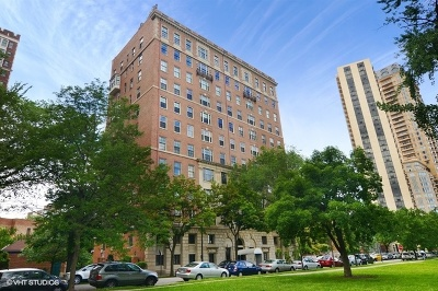 Chicago Condo/Townhouse For Sale: 2450 North Lakeview Avenue #10