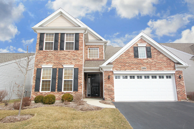 Elgin Single Family Home For Sale: 3884 Valhalla Drive