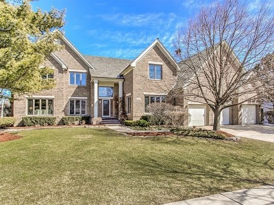 Schaumburg Single Family Home For Sale: 814 Winfal Drive