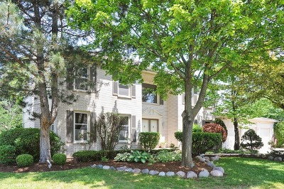Arlington Heights Single Family Home For Sale: 3916 North Proctor Circle