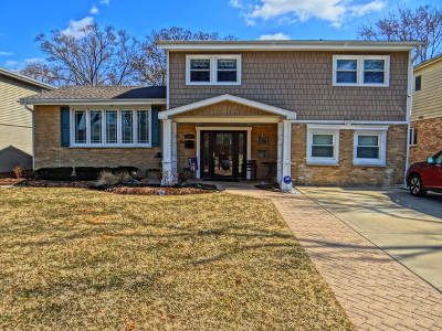 Arlington Heights Single Family Home For Sale: 441 South Fernandez Avenue
