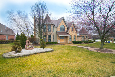 Homer Glen Single Family Home For Sale: 13637 South Kickapoo Trail South
