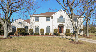 Burr Ridge Single Family Home For Sale: 2 Saddle Court