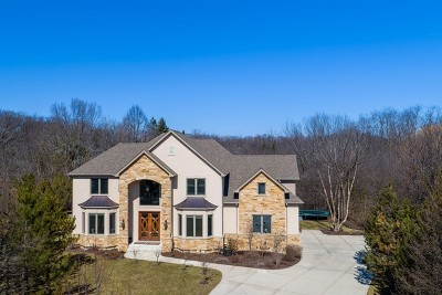 Winfield Single Family Home For Sale: 0s480 Rebecca Lane