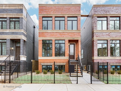 Chicago Single Family Home New: 548 East 46th Place