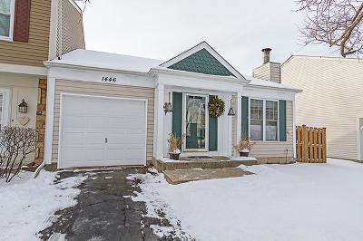 Palatine Condo/Townhouse New: 1446 Driftwood Avenue