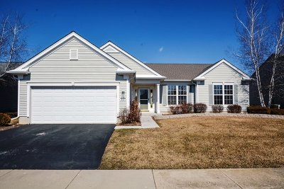 Huntley Single Family Home For Sale: 13178 Stonebridge Lane