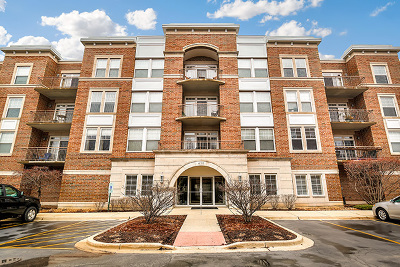 Palatine Condo/Townhouse Re-Activated: 435 West Wood Street #313A