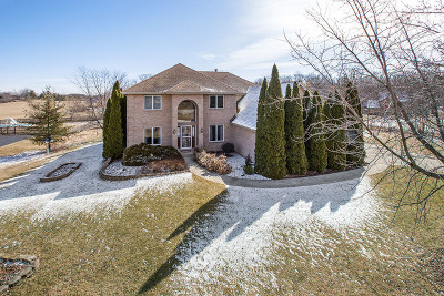 Homer Glen Single Family Home For Sale: 16653 South Kensington Drive