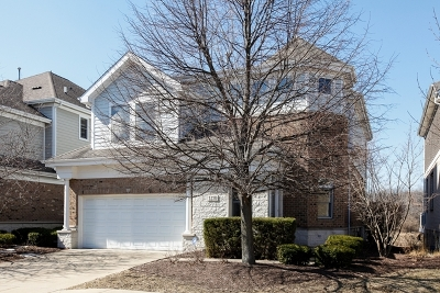 Lisle Single Family Home For Sale: 1270 Lake Shore Drive