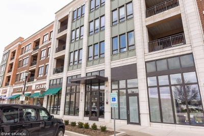 Burr Ridge IL Condo/Townhouse New: $719,000