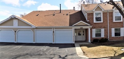 Buffalo Grove Condo/Townhouse New: 275 Appletree Court #1