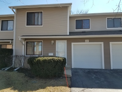 Palatine Condo/Townhouse New: 1161 East Randville Drive