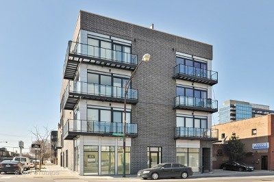 Chicago Condo/Townhouse New: 440 North Halsted Street North #2B