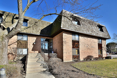 Buffalo Grove Condo/Townhouse New: 4 Oak Creek Drive #3508