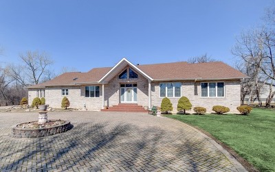 Lemont Single Family Home For Sale: 17662 Bluff Road