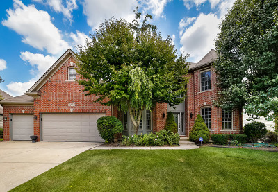 Naperville Single Family Home For Sale: 3728 Mistflower Lane