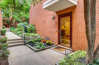 Chicago Condo/Townhouse New: 1153 South Plymouth Court #A