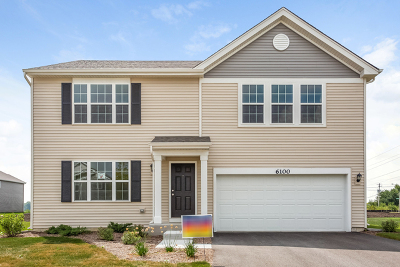 Will County Single Family Home New: 6100 Autumn Oaks Drive