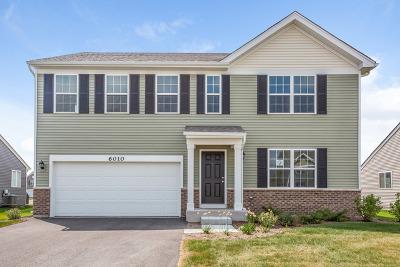 Will County Single Family Home New: 6010 Autumn Oaks Drive