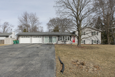 Grayslake Single Family Home New: 250 Oakwood Drive