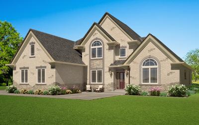 Lemont Single Family Home For Sale: 10225 Como Court
