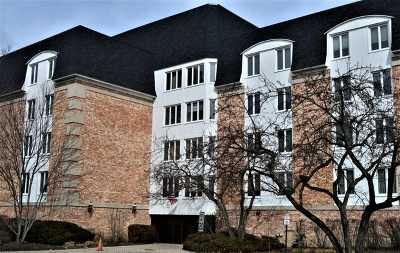 Buffalo Grove Condo/Townhouse New: 200 Lake Boulevard #448