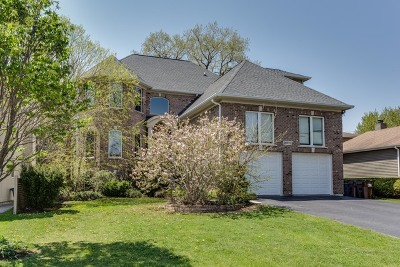 Buffalo Grove Single Family Home New: 20730 North Eugene Avenue