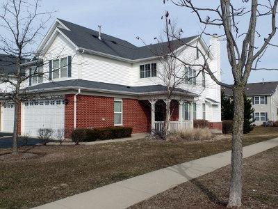 Oswego Condo/Townhouse For Sale: 391 McGrath Drive #391