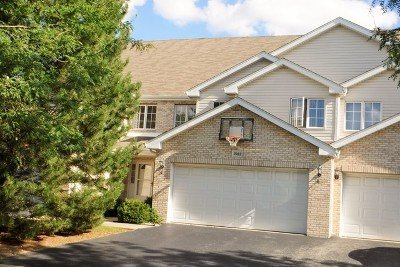 Palos Heights, Palos Hills Condo/Townhouse New: 7922 West 105th Street
