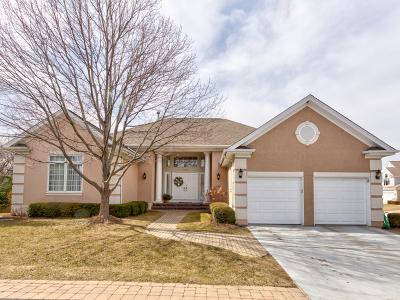 Palatine Single Family Home New: 1132 South Hiddenbrook Trail