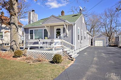 Grayslake Single Family Home New: 371 North Lake Street