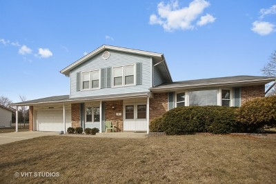 Hoffman Estates Single Family Home New: 3950 Lexington Drive