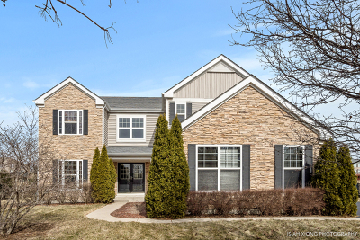 Aurora Single Family Home New: 3293 Homestead Avenue