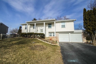 Buffalo Grove Single Family Home New: 1101 Belmar Lane