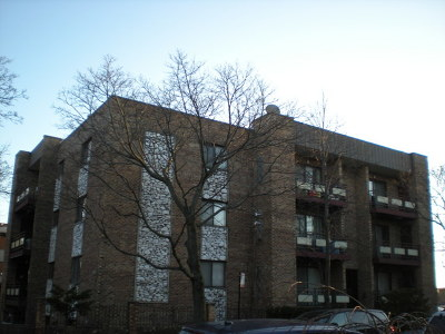 Chicago Condo/Townhouse New: 6034 North Wolcott Avenue #3N