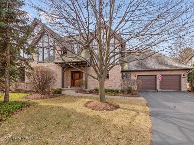 Burr Ridge IL Single Family Home New: $895,000